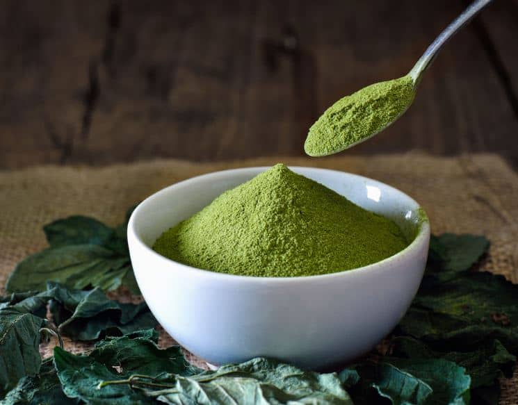 green tea extract can help increase weight loss